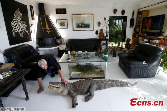 Frenchman shares home with 400 reptiles